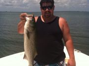 T-Time Charters, Great day of fishing aboard the T-Time! This is what we caught this afternoon !