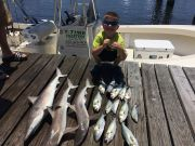 T-Time Charters, Good shark fishing with bluefish in the ocean today