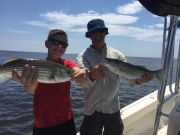 T-Time Charters, Plenty of trout and stripers in the sound today