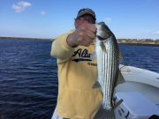 T-Time Charters, One of our stripers from this morning, also caught trout and flounder
